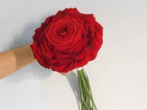 Bouquet Glamelia